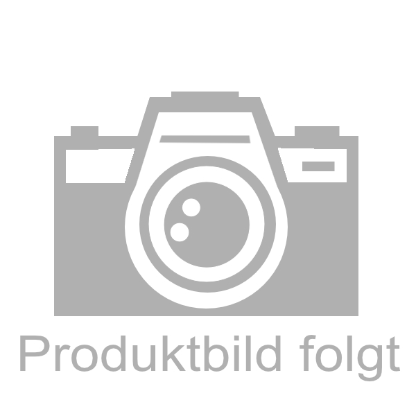 Balthes Tee Blasen- und Nierentee ohne Wermut